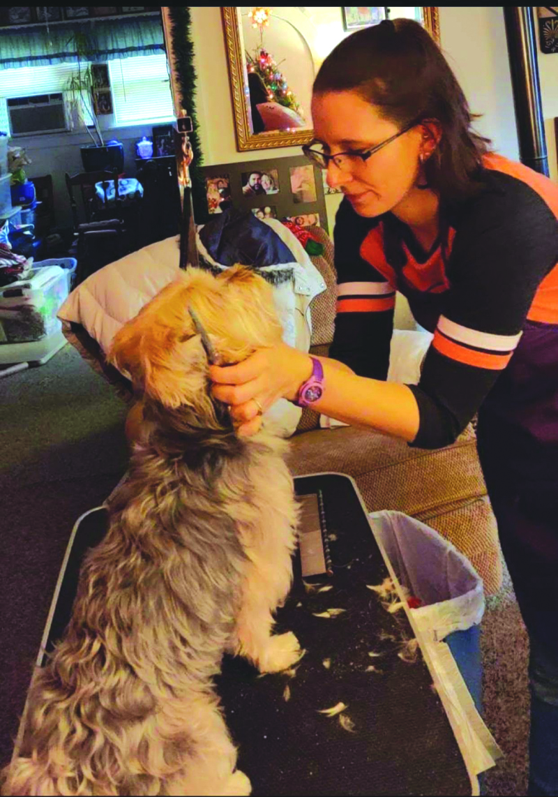 Amanda's Pampered Pets grooms in your home