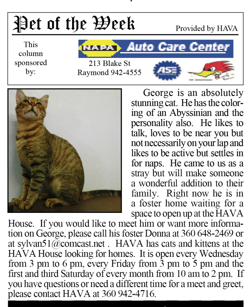 Pet of the Week 8.26.15