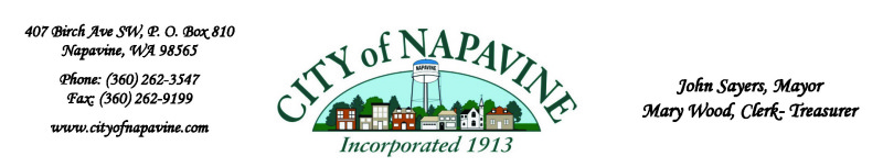 City of Napavine Special Workshop Meeting