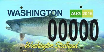 WDFW seeks support for steelhead license plate