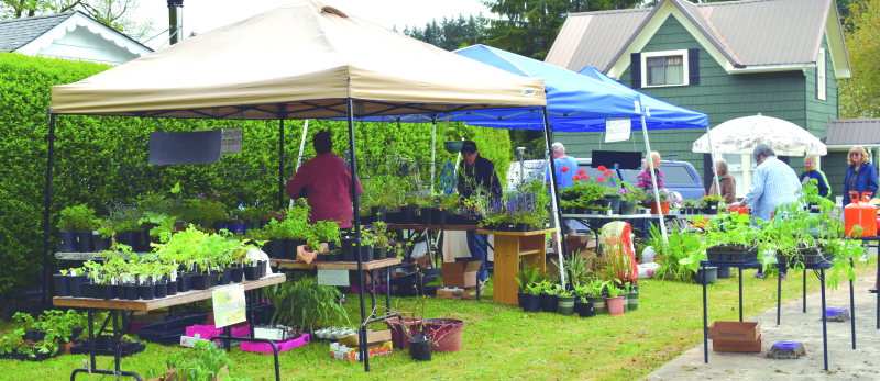 Winolequa Garden Club holds annual plant sale