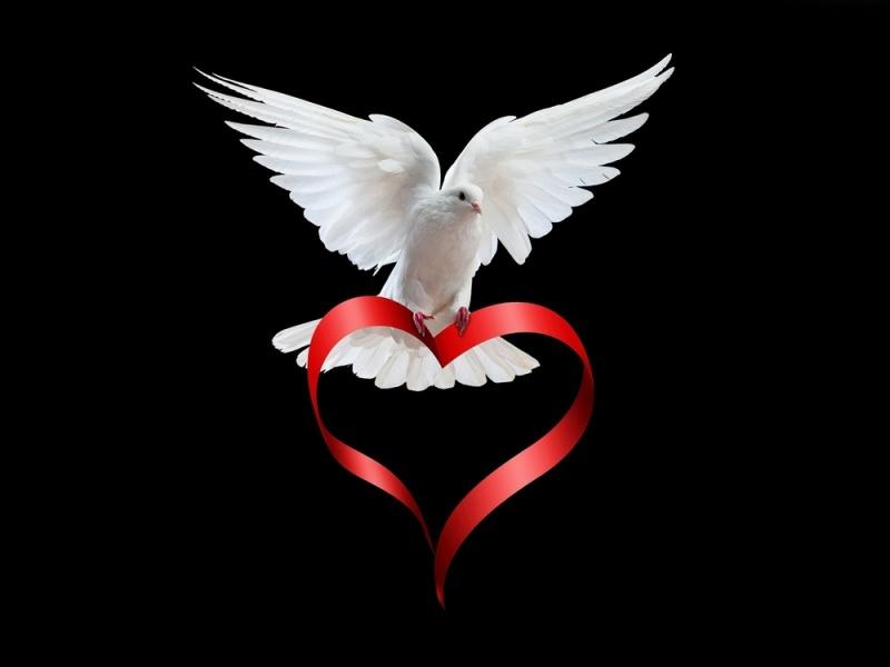 In Loving Memory of Merle Levi King