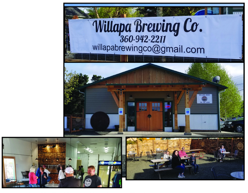 Willapa Brewing Co: Taproom and  pizzeria now open