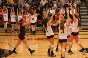 Lady Indians earn State volleyball berth