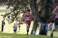 Toledo/Winlock cross country team advances to state competition
