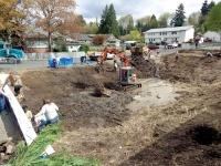 Volunteers help transform Castle Rock's 'Jackson Hole'