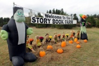 Area pumpkin patch open and ready for the Halloween season