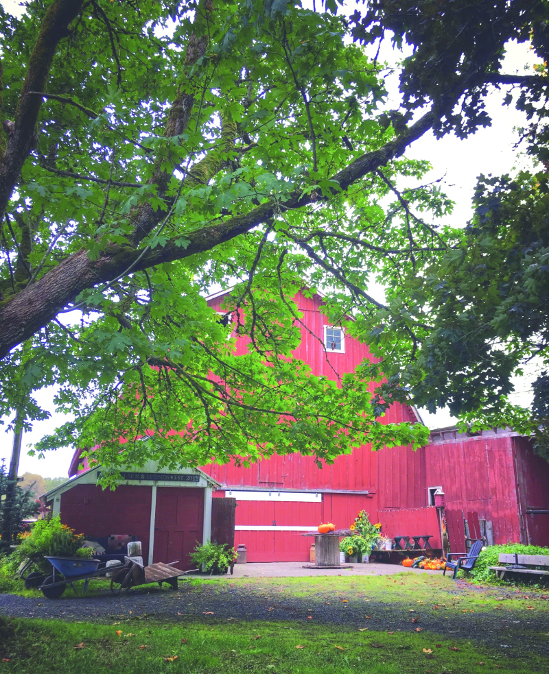Wedin Farms, a taste of local history