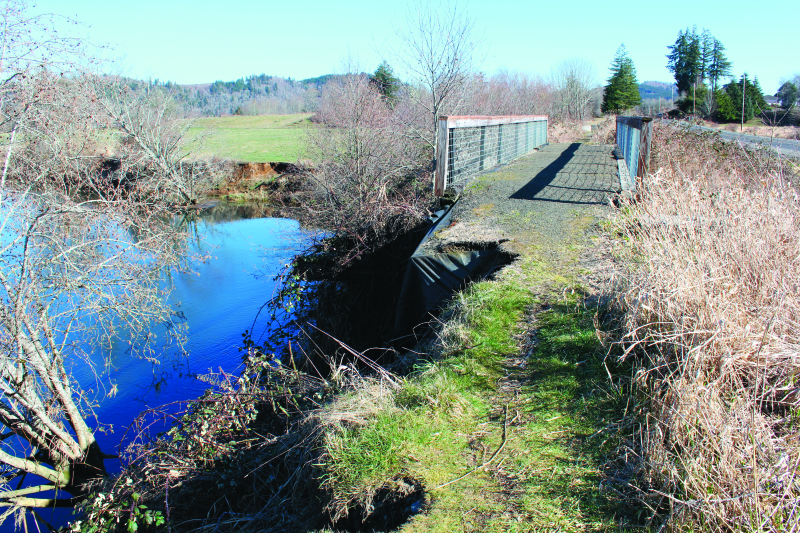 Wllapa Hills Trail deteriorating fast