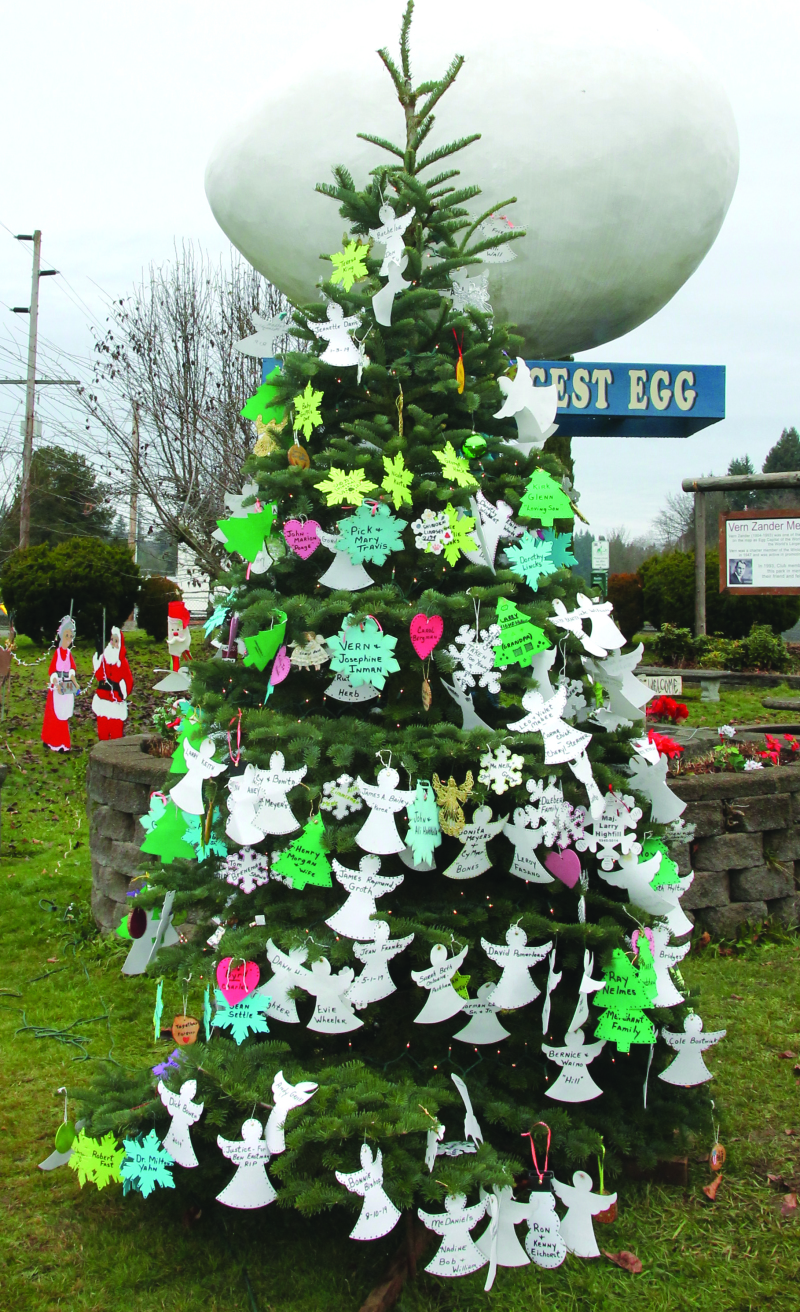 Remembering loved one with the Winlock Memorial Tree