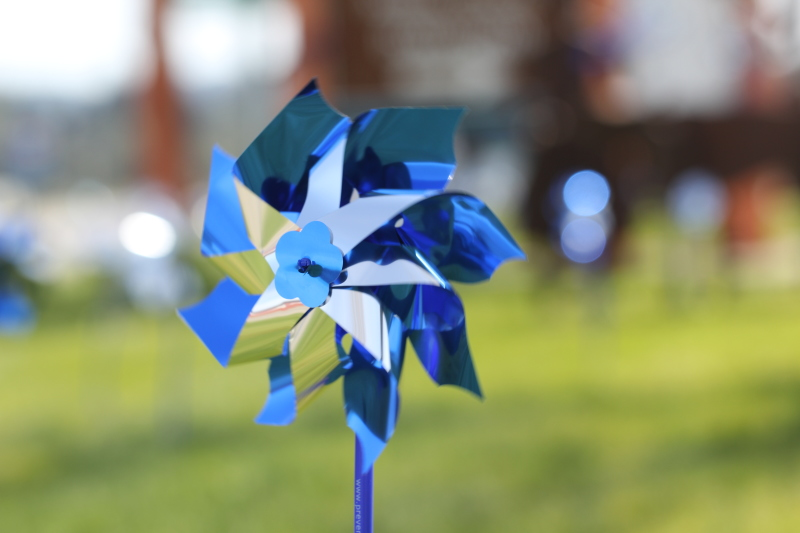 Pinwheels for Child Abuse Awareness