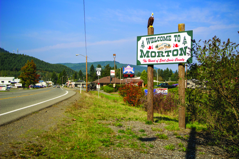 Morton's police chief singled out by activists