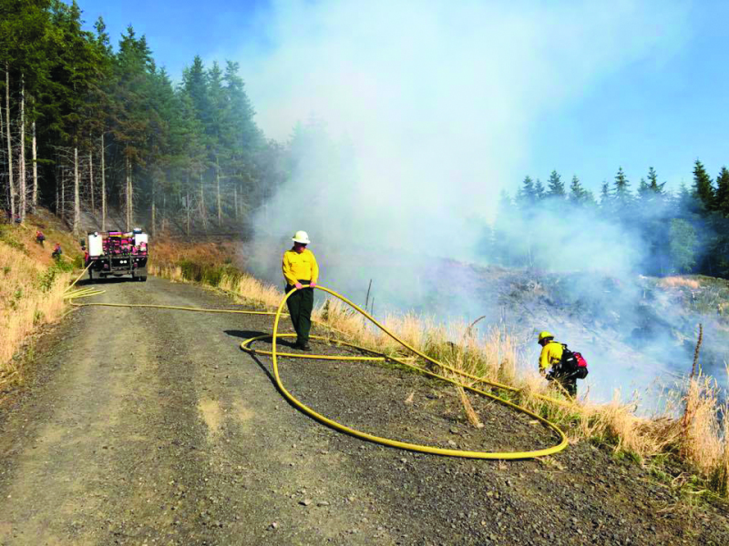 Wildfires burn in timber over the weekend